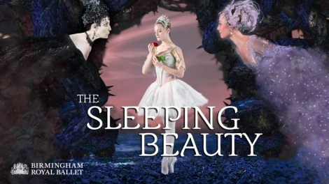Image result for birmingham royal ballet sleeping beauty
